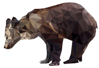 Vector Geometric polygon silhouette brown bears on transparency white background isolated