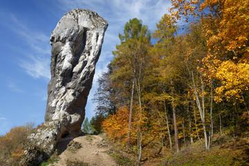 Fototapeta Rock called Maczuga Herkulesa in Pieskowa Skala.Poland obraz