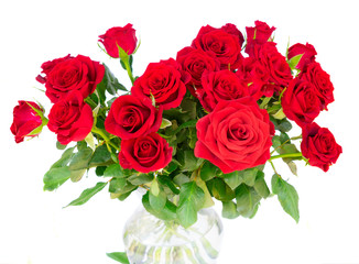 Bright red rose buds with green leaves isolated on white background