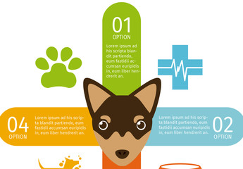 Doberman Face Illustration Dog and Pet Care Infographic