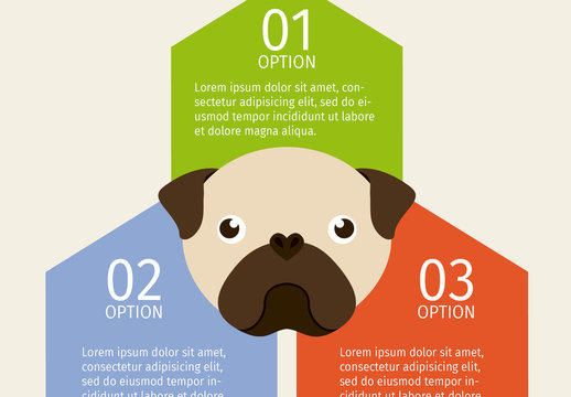 Pug Face Illustration Dog and Pet Care Infographic 1