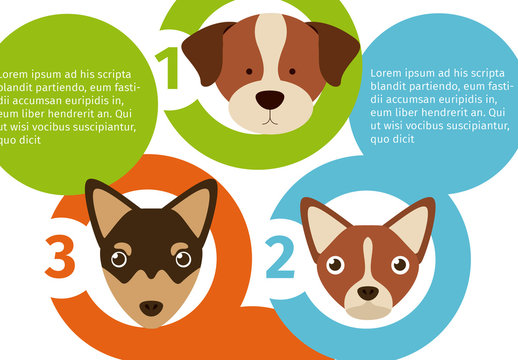 Circle Element Dog Face Illustration Pet Care Infographic