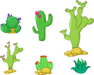 Different types of cactus plants realistic decorative icons set for you design