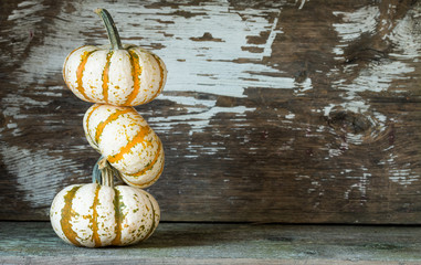 Three Stacked Pumpkins with space for text if desired