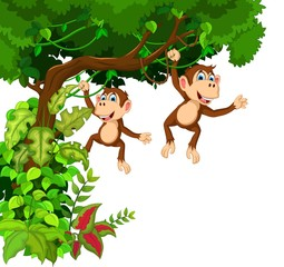 happy monkey cartoon hinging