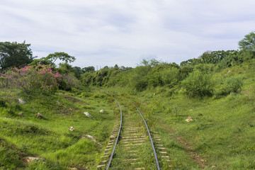 ロス・インヘニオス渓谷への鉄道旅