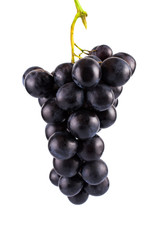 Bunch of black grapes. On white, isolated background.