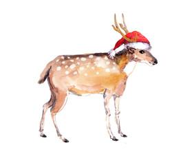 Christmas deer in red santa's hat. Watercolor xmas animal
