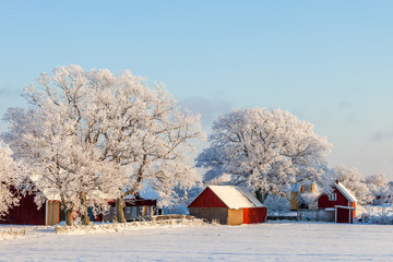 Farmhouse with frost and snow in the winter