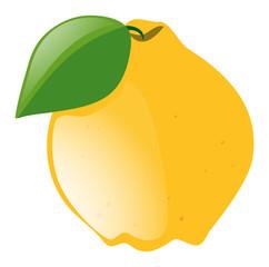Fresh lemon with green leaf