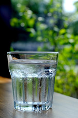 A glass full of cold water with green leaves in background