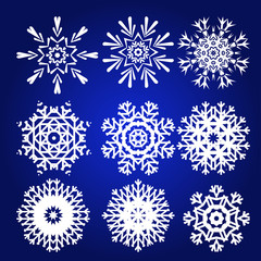 Decorative Snowflakes Vector Set