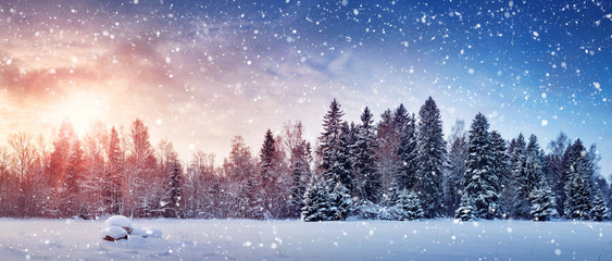 Beautiful tree in winter landscape in late evening in snowfall Wall mural