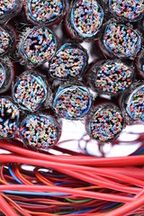 Electrical and Telecommunication Cables Close Up