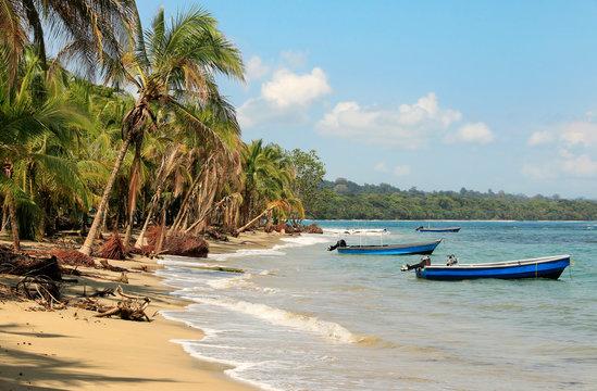 Beautiful beach in Costa Rica (Caribbean Sea)