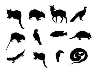 silhouttes animals.