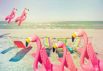flamingo family fun 2
