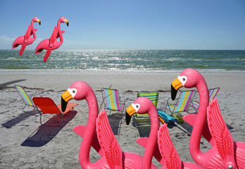flamingo family fun 1