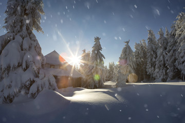 Landschaft Winter Cover