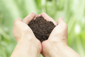 We love the world of ideas, woman planted a soil in the hands.Blur the background of sky and grass