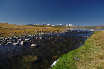 Highland river stream flowing from lake on a plateau on the background of mountains with snow and glaciers under clear blue sky Ukok, Altai mountains Siberia, Russia