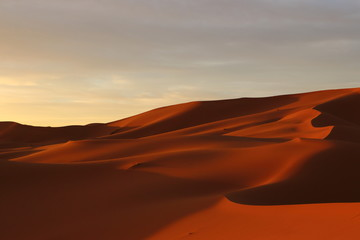 Fotobehang Baksteen サハラ砂漠