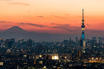 Poster Tokio 東京スカイツリーと東京の夜景