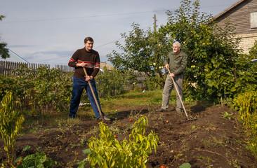 Two men working in the garden