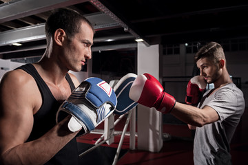 Side view of young boxer training hook on pad