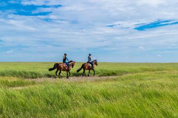 Tuinposter Paardrijden Ausritt in den Salzwiesen Nordsee