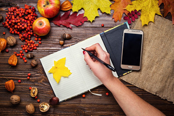 girl writes, notebook, pen and telephone in autumn still life, fall leaves, gifts of autumn,  wooden background, walnuts, maple leaves - autumn composition from top. Colorful autumn leaves