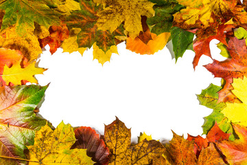 Frame composed of colorful autumn leaves over white background. Copy space for text.
