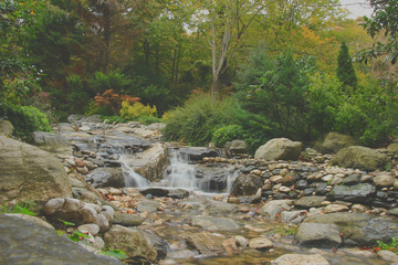 İstanbul Atatürk Arboretumu