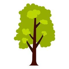 Big green tree icon. Flat illustration of big green tree vector icon for web