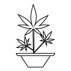 Hemp in pot icon. Outline illustration of hemp in pot vector icon for web