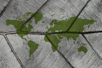 World Map on Dry Leaf Texture Background, Climate Change concept