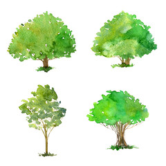 Wall Murals Kids set of trees drawing by watercolor