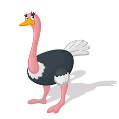 Funny cartoon ostrich vector illustration. Animal Zoo concept.