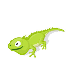 Funny cartoon chameleon vector illustration. Zoo reptile concept