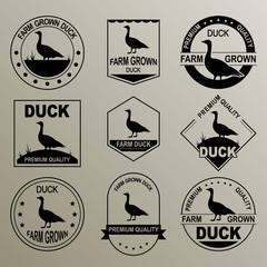 The original logo for the duck. Farm grown meat. Premium quality.