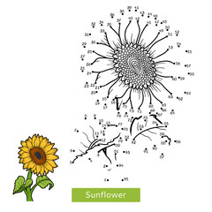 Numbers game for children, flower Sunflower