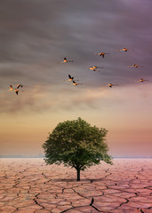 Fantastic scenery: a single tree in the desert with pink flamingos in flight
