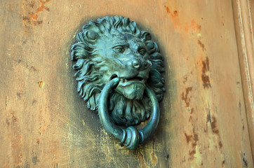 detail photography of old metal door knocker lion head