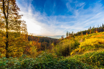 Autumnal landscape of colorful trees in Hoegne Valley, Belgian Ardennes