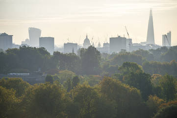 City skyline view of London, England with autumn trees on a misty morning as viewed from a North London park