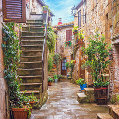 Wall Mural - Alley in Italian old town, Tuscany, Italy
