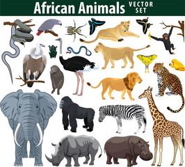 Wild african animals set with zebra ostrich lion rhinoceros hippo snake leopard vulture parrot gorilla butterflies giraffe frog isolated vector illustration