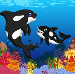 killer whales cartoon with underwater view and coral background