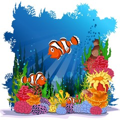 funny clown fish with sea life background