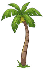 Coconut tree cartoon style